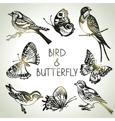 Hand drawn bird and butterfly set vector image