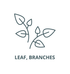 leaf branches line icon linear concept vector image