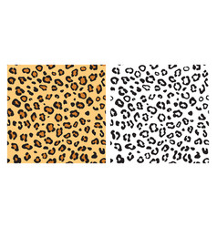 leopard seamless pattern background vector image