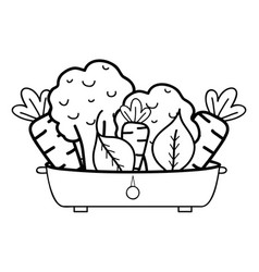 Line fresh and delicious vegetables inside of pot vector