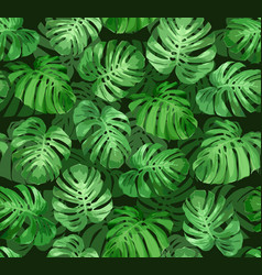 Monstera leaves seamless tropical background vector