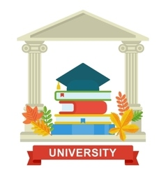 university education concept vector image
