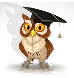 wise owl in cap vector image