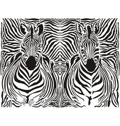 zebra pattern background vector image vector image