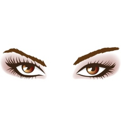 woman brown eyes vector image