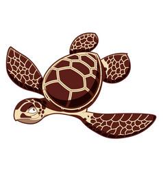 catroos sea turtle vector image vector image