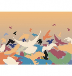 color pigeons vector image vector image