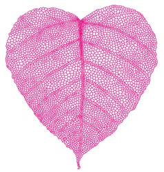 red heart leaf vector image vector image