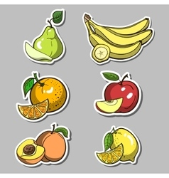 Stickers With Fruits Set vector image vector image