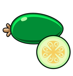Feijoa on a white background Sliced fruit vector image