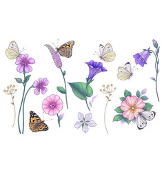 hand drawn wild flowers and butterflies set vector image
