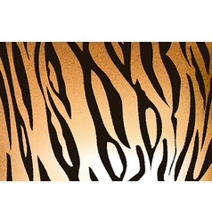 tigerskin5 vector image