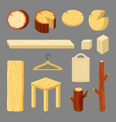 wooden accessories cartoon vector image