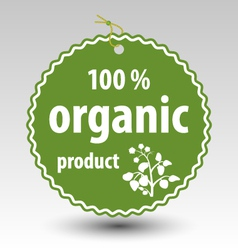 green organic product stamp tag label vector image