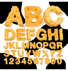 Alphabet and numbers made of cheese vector image