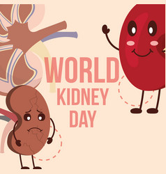cartoon kidneys characters world kidney day vector image