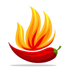 chili pepper in fire retro emblem vector image
