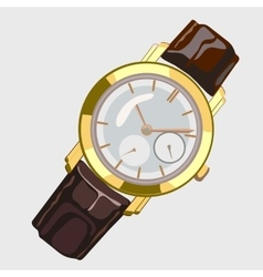 Classic mens watch with brown strap and gold dial vector image