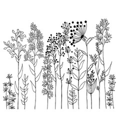 Hand drawn of design wildflowers floral vector