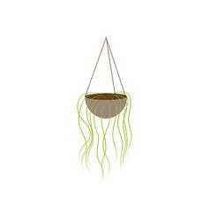 Icon in flat design flower pot vector