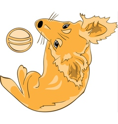 Pretty red haired dog with a ball color version vector