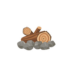 Campfire and bonfire place made large wooden vector