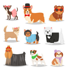 Dog puppy pet animal doggie character in vector