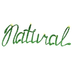 Natural lettering tinsels vector image