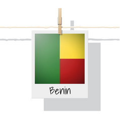 photo of benin flag vector image