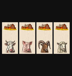 Pig cow sheep and goat heads isolated on wood vector