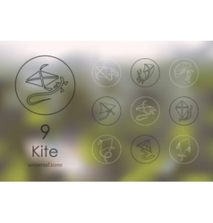 Set of kite icons vector image