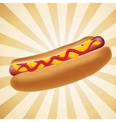 Realistic hot dog vector image vector image