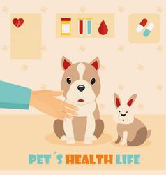 Veterinary medicine hospital doctor with cute dog vector