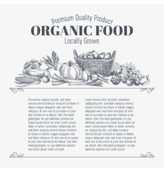 background with hand drawn organic food vector image