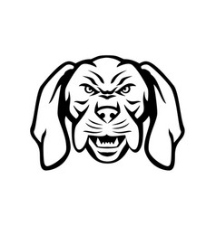 angry hungarian vizsla dog head mascot black vector image