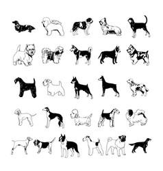 Dog clipart cartoon collection set vector