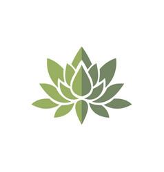 lotus green logo vector image