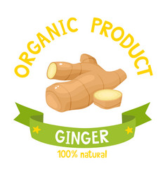 Organic badge ginger with ribbon banners vector