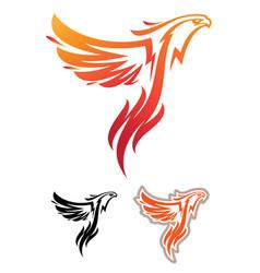phoenix sport mascot vector image