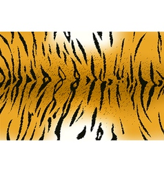 tigerskin2 vector image