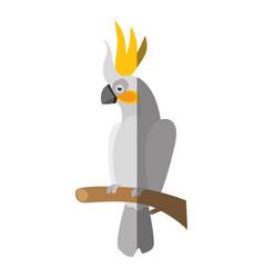 Wild exotic bird vector