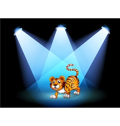 A tiger at the stage with spotlights vector image vector image