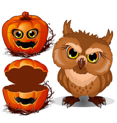 Angry owl and halloween scary pumpkin face vector