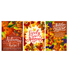 Autumn festival or party posters with fall harvest vector