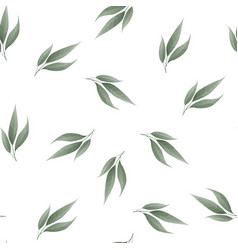 bay leaf seamless pattern food background vector image