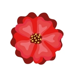 floral decoration isolated icon design vector image