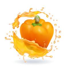 Orange bulgarian pepper bell realistic icon vector