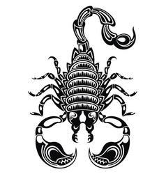 scorpion vector image
