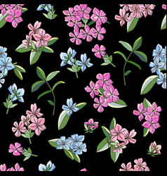 Seamless pattern with phlox flowers isolated on vector