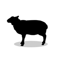 sheep farm mammal black silhouette animal vector image